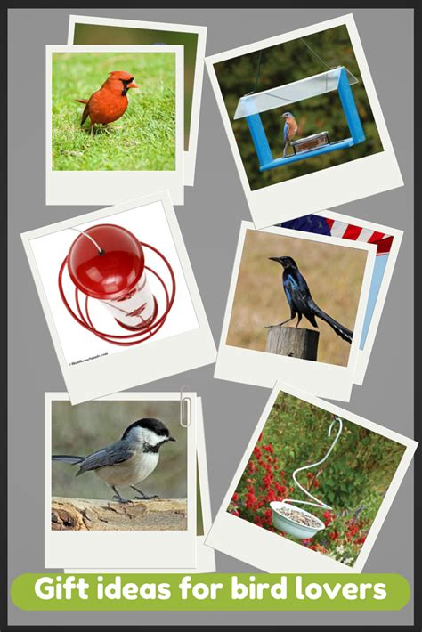 6 gift ideas for bird lovers birdhousesupply com