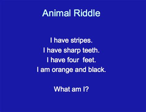 best riddle grade best riddles