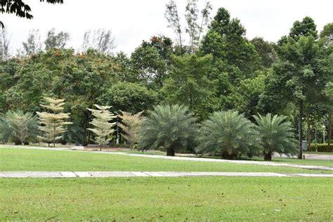 Putrajaya Botanical Garden Malaysia Top Tips Before You Putrajaya Botanical Garden