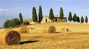 tuscan landscape when in ro tuscany continued visions of vitality