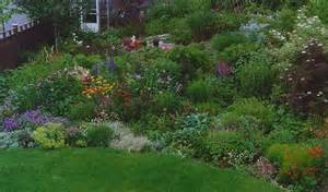 Landscape Zone 9 Landscaping Landscaping Ideas For Zone 6