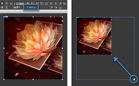 resize layout photoshop resize content in a frame in indesign adobe indesign cc