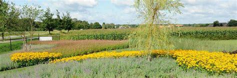eiwitarm bloem nadelen grind tuin 28 images moderne voortuin met