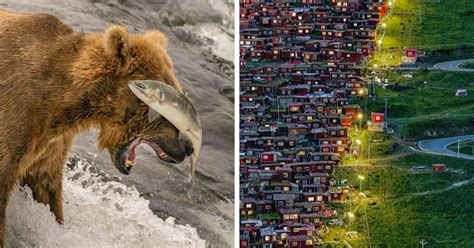breathtaking winning pictures   years national