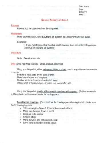 layout of a report writing how to write a formal lab report in biology by va23990