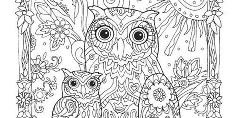 coloring pages for adults abstract owls abstract owl coloring pages for adults www pixshark com