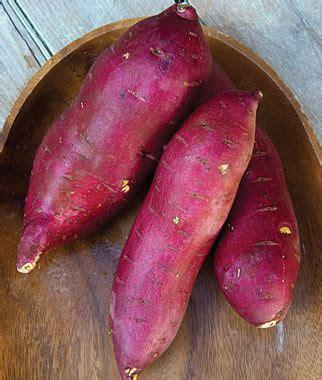 sweet potato farmville 2 wiki murasaki 29 pp19955 sweet potato seeds and plants