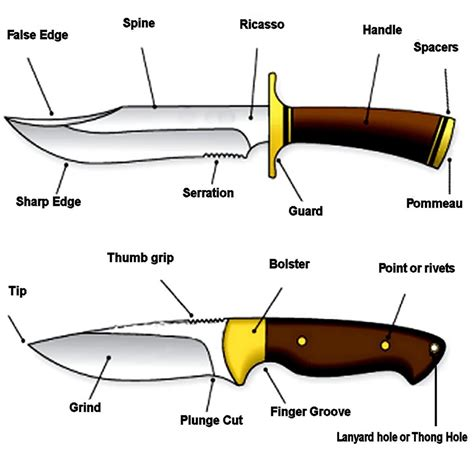 The Best Kitchen Knives knife terminology knife use and parts descriptions