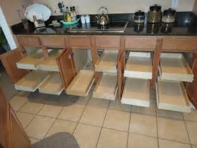 Kitchen Cabinets Roll Out Shelves by Traditional Kitchen Cabinets
