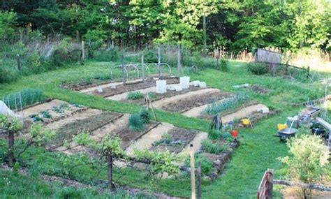 Terracing A Sloped Backyard Barbara Pleasant My Hillside Vegetable Garden