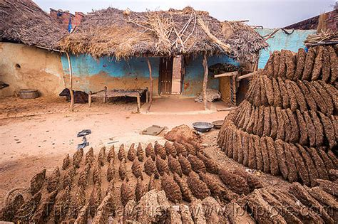 cow poop house india travellerspoint travel photography gober cow dung drying in indian village