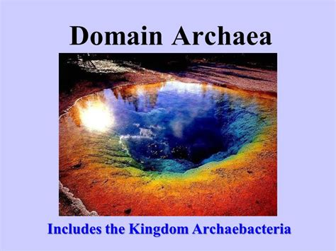 includes the kingdom archaebacteria ppt