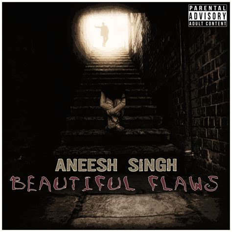 rap hip hop hip hop albums news and artists serious personable cd cover design for aneesh singh by