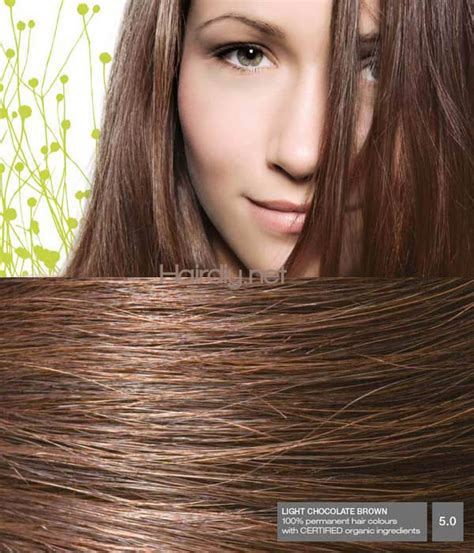 light cocoa hair color light chocolate brown hair dye brown hairs