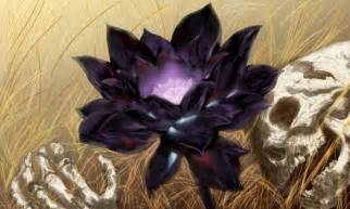 Back Lotus Black Lotus By Karl Smink On Deviantart