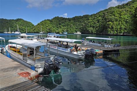 sam s boat drink prices sam s tours palau dive trip reviews photos special