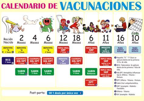 calendario de vacunacin 2016 en argentina cuidemos la infancia