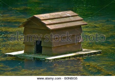 Floating Duck House On The Pond Stock Photo 18467695 Alamy