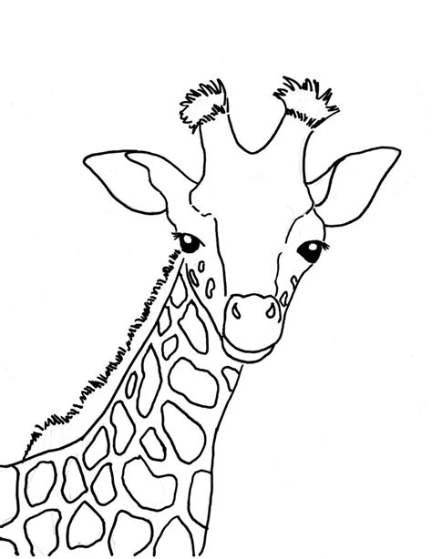 Giraffe Coloring Pages by Baby Giraffe Coloring Page Bell