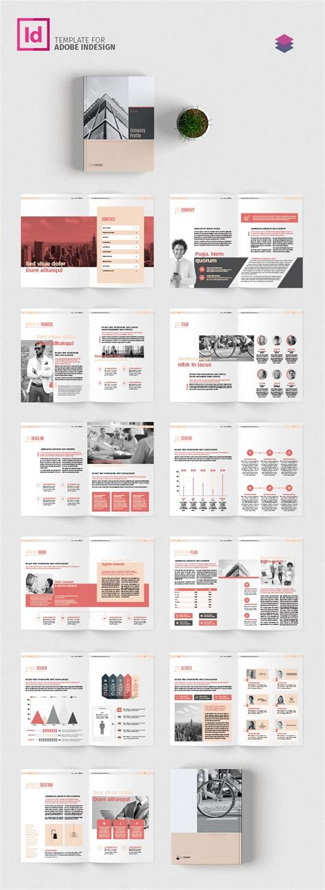 company profile template adobe indesign templates