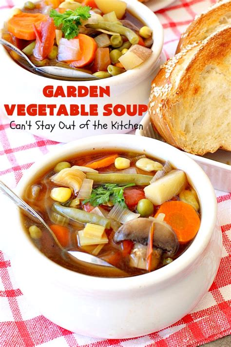 garden vegetable soup can t stay out of the kitchen