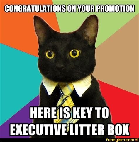 Funny Congratulations Meme - congratulations on your promotion here is key to executive