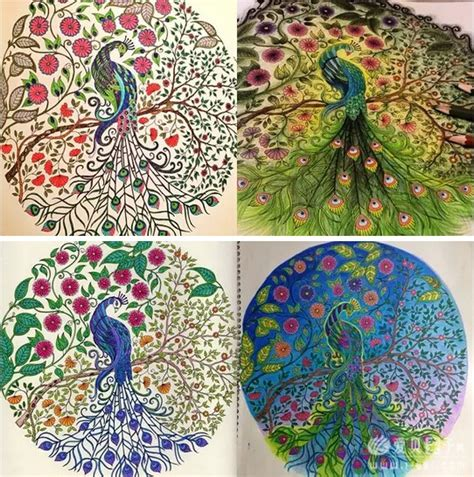 secret garden coloring book ideas 秘密花园 一本探索奇境的手绘涂色书 这本书 让99 的人成为手绘高手 点读笔资源 爱贝亲子网