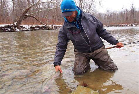 how to swing a fly for steelhead swinging for great lakes steelhead and other salmonids