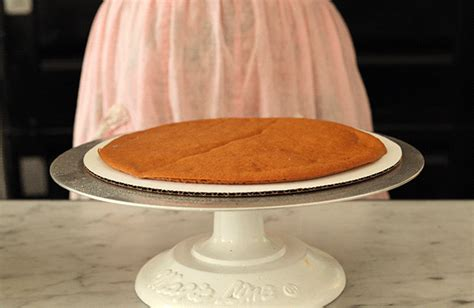 how to layer gifs 20th century caf 233 s russian honey cake in animated gifs