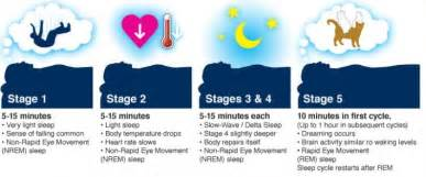 Light Deprivation 7 Hours Of Sleep Enough Common Sleep Myths And Facts