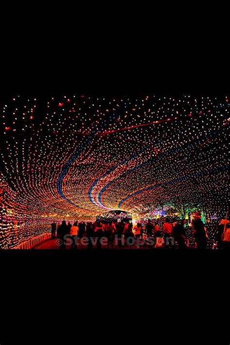 hossley lighting austin tx 17 best images about all austin texas on pinterest lakes