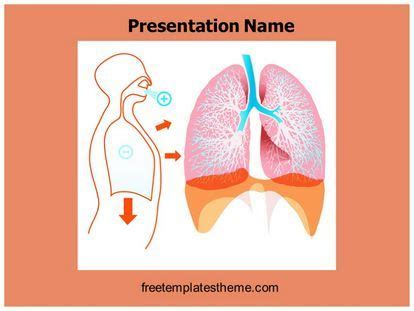 powerpoint templates free lungs download free lungs powerpoint template for your