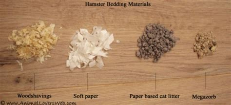 best hamster bedding pin is the best type of hamster bedding animal lovers