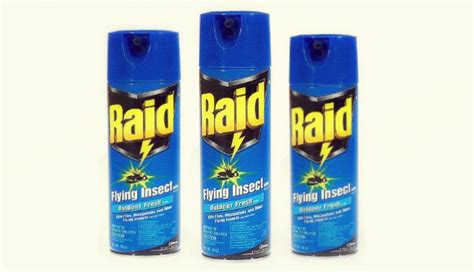does raid kill bed bugs does raid kill bed bugs if finding bed bugs wasnu0027t