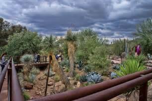 the desert botanical garden pictures arizona