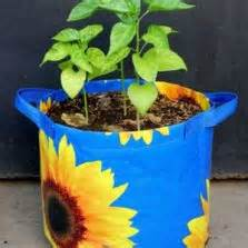 Wall Planter 6 Kantong Motif Peeble planter bag tomato print 15 liter bibitbunga