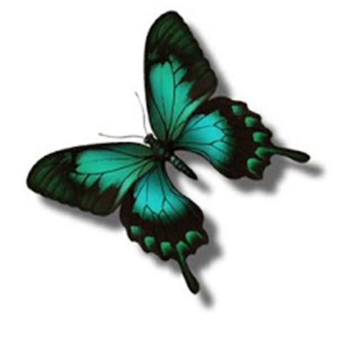 imagenes de dos mariposas juntas dibujo de mariposas para imprimir y colorear l 225 mina de