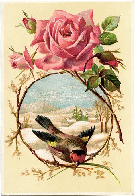 vintage kommode vintage kommode rosa deptis gt inspirierendes design