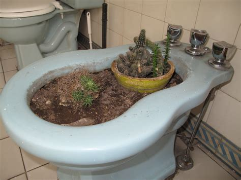 How Do U Use A Bidet 1000 images about how to use a bidet on grow your own search and the o jays