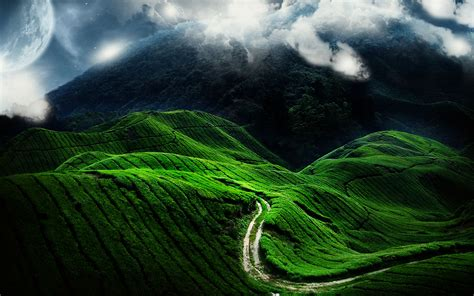 Natural views images green is the best color hd wallpaper and