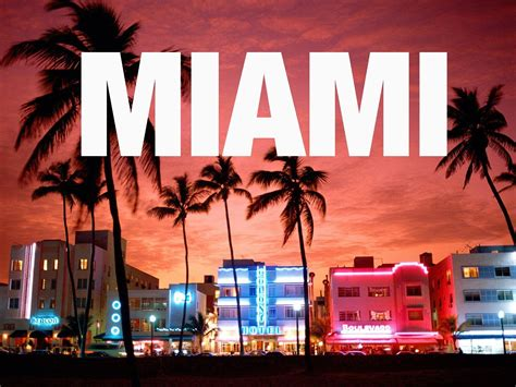 Miami Must by 3 Must Visited Attractions In Miami Florida Miami Movers