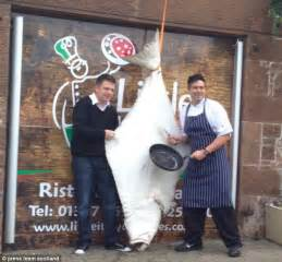 Restaurant Kitchen Knives restaurant boss spends 163 1 500 on gigantic 16 stone halibut