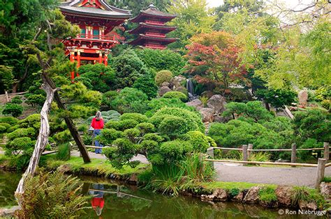 San Francisco Garden by Japanese Tea Garden Photo Stock Photo Of San Francisco