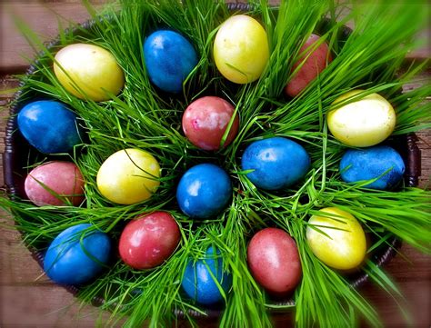 twig and toadstool vibrant vegetable dyed easter eggs