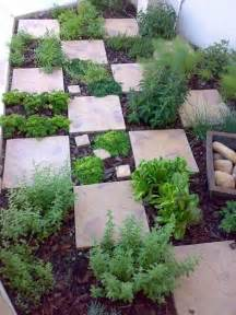 easy herb garden pinterest