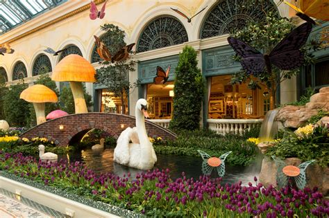 Botanical Gardens Bellagio by Flora And Butterflies Are Abloom At Bellagio S