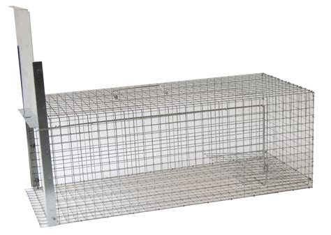 gabbia trappola per gatti gatto trappola eco per gatti mis media vano esca