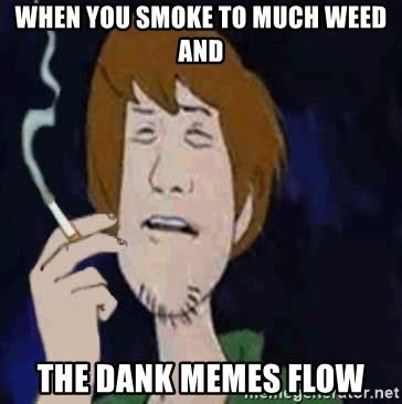 shaggy espaa ol when you smoke to much and the dank memes flow