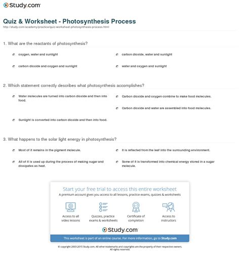 Photosynthesis Worksheet by Worksheet Answers And Photosynthesis Diagrams
