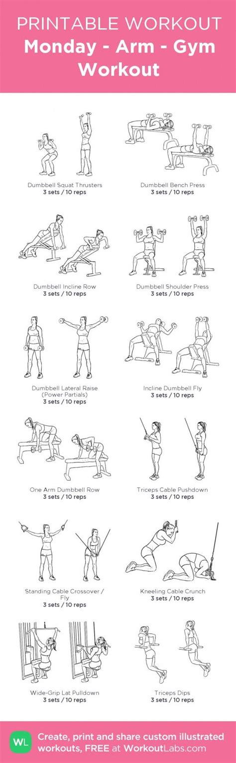printable exercise program for beginners gym exercises for beginners pdf the complete guide to